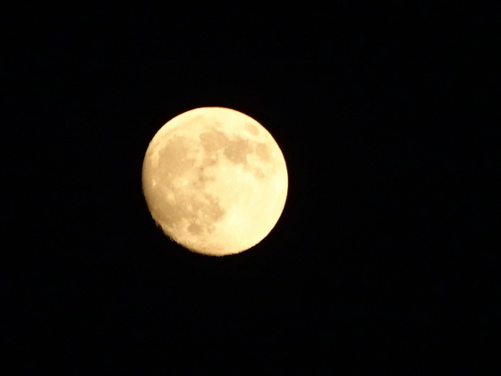 2015.09.26 迎月的月光